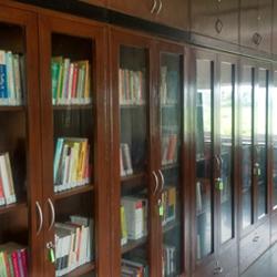 Restoration of libraries