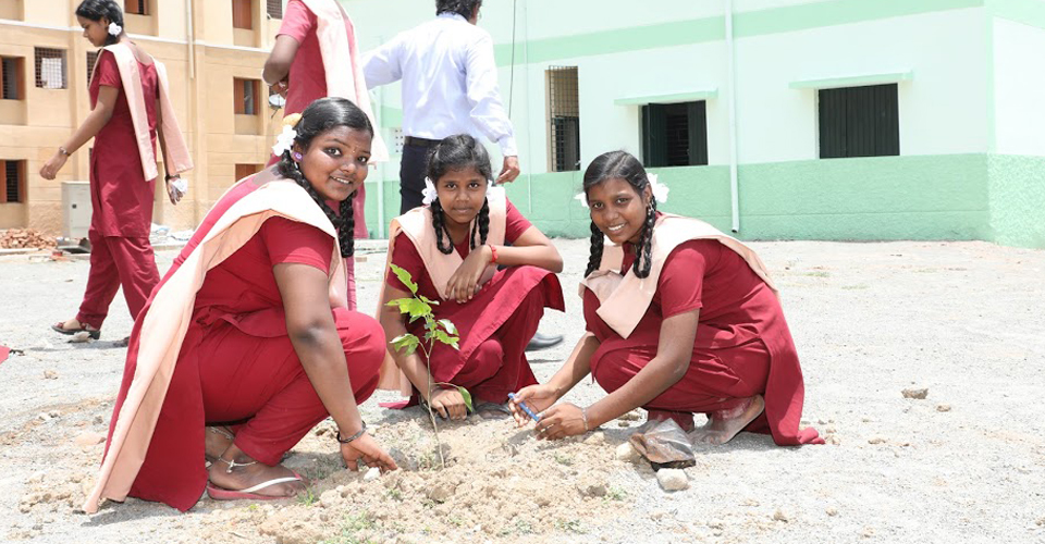 Restoration of Schools 8